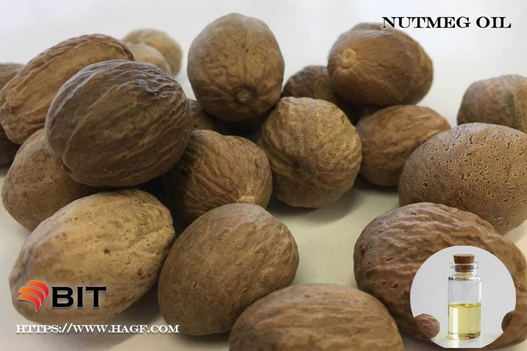 Supercritical CO2 Extraction of Nutmeg Oil