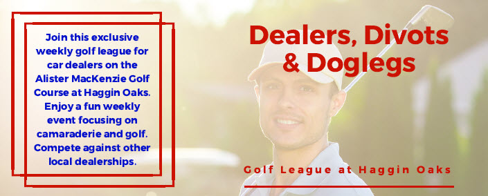 Dealers Divots and Doglegs