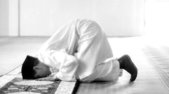 the truth about the muslim prayer rugs at fox news dc hq the