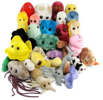 Stor samling med olika bakterier, virus, celler och annat smått