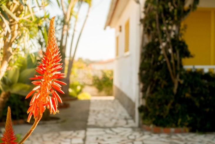 fotografia fotógrafo imóveis casas férias empresa fotografia