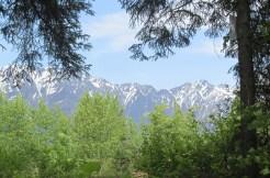 26 Mile – Chilkat Lake Road building lot