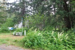 Chilkat Trail Road Building Lot