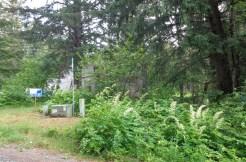 Chilkat Trail Road Building Lot