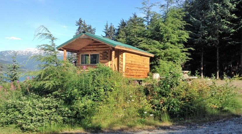 Cabin One 2