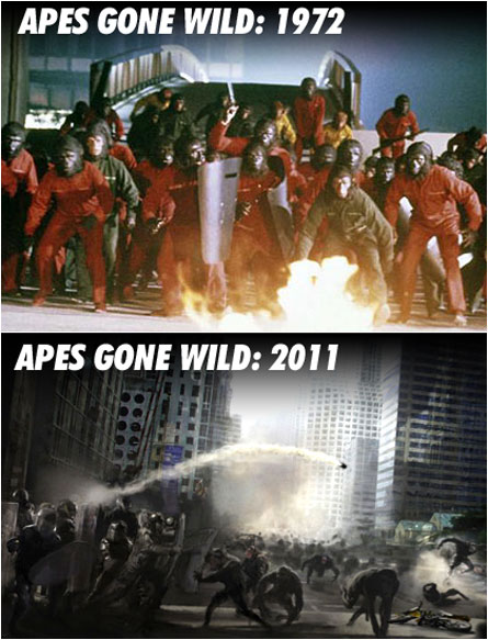 Apes Gone Wild