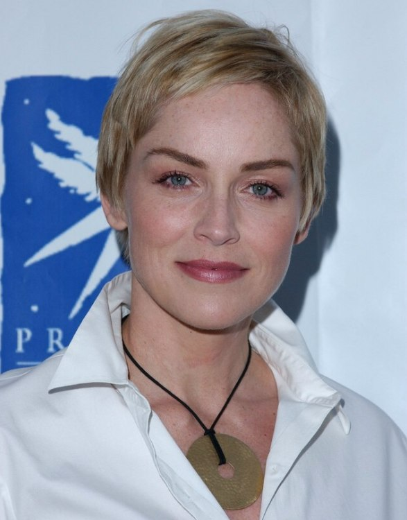 Sharon Stone Perfectly Cut Pixie With The Hair Left