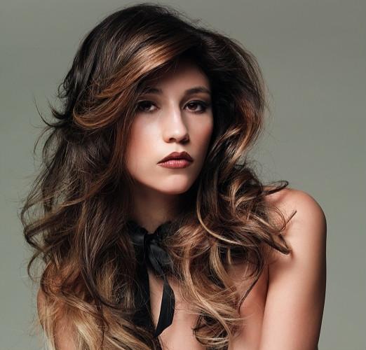 Brunette Hair Highlights
