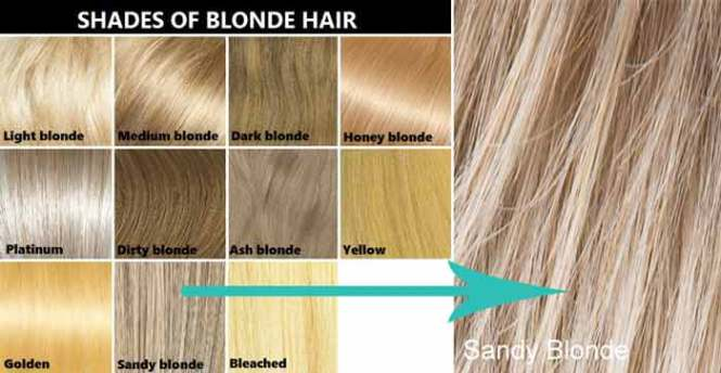 Majirel blonde hair color the best blonde hair 2017 mocha hair color chart highlights ideas with pictures mag pmusecretfo Images