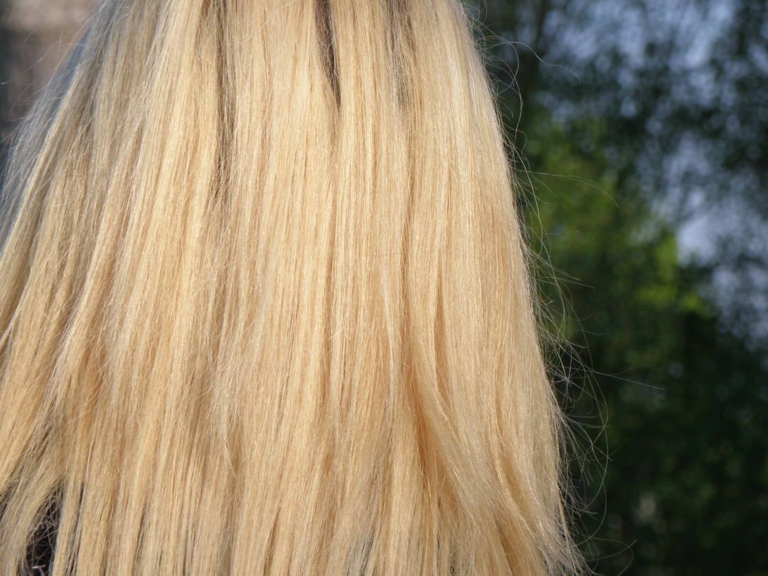 Blond Closeup