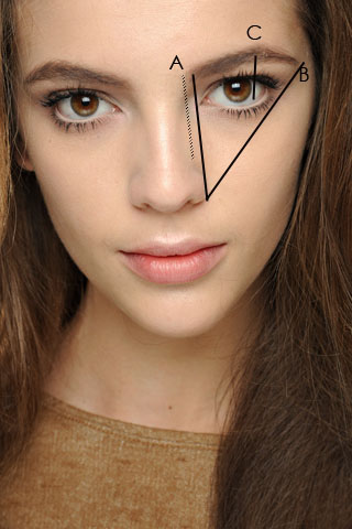 picture Perfect Eyebrow Shape Pictures how to find your perfect eyebrow shape