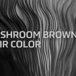 Mushroom Brown Hair Color Formula Redken Shades Eq