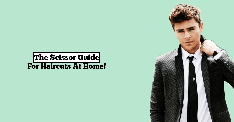 best scissors guide
