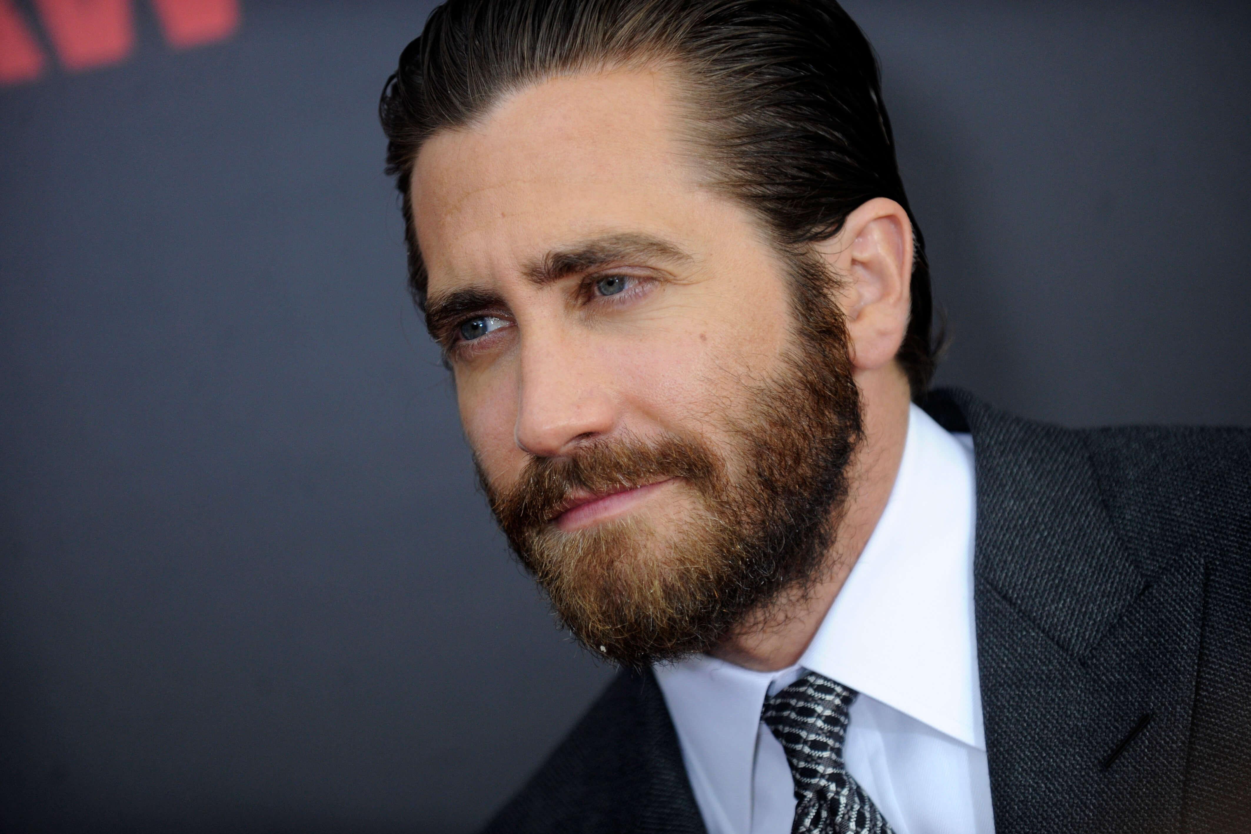 jake gyllenhaal sporting verdi beard