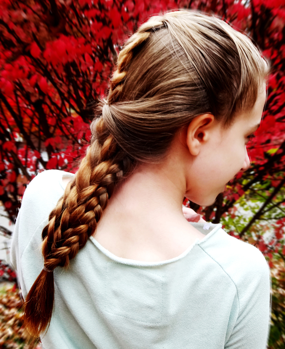 Stunning-French-Braid