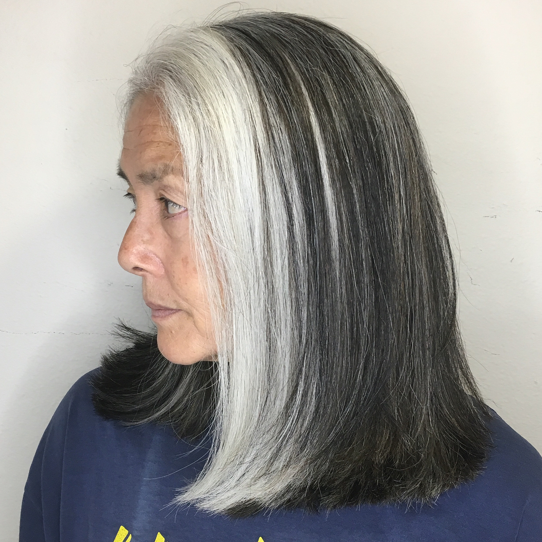 Hairstyles Highlights Hair Hide Long And Gray Lowlights
