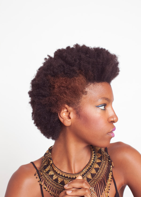 Afro Hairstyles Page 20