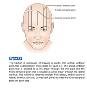 lateral anterior point