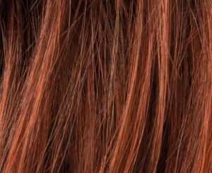 Cinnamon Wig Colour By Ellen Wille