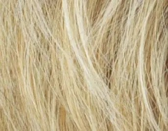 Light Honey Mix Wig Colour