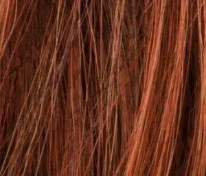 Hot Cinnamon Wig Colour Ellen Wille