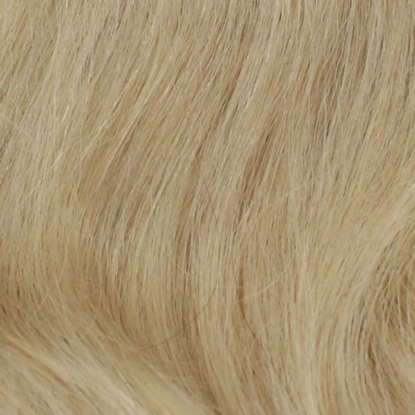 22 Human Hair Colour by Wig Pro