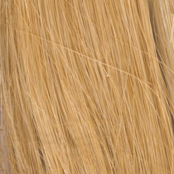 R7HH Strawberry Blonde | Human Hair Wig Colour by Raquel Welch