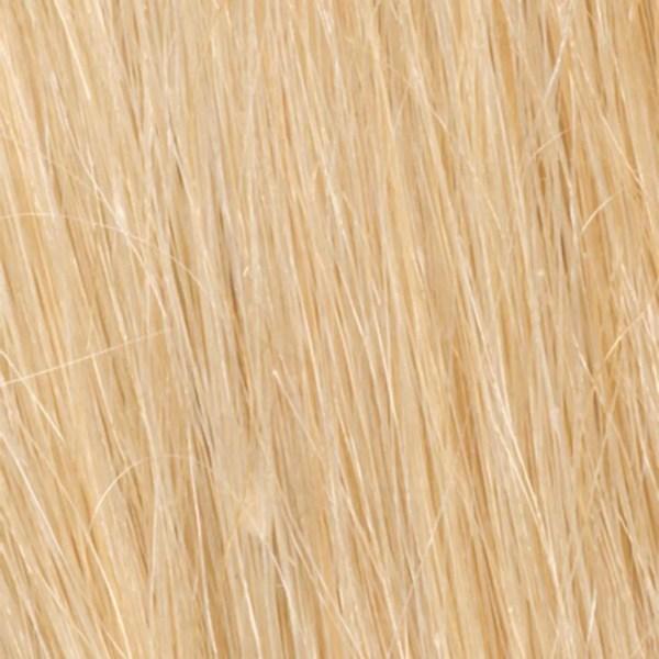 R9HH Light Golden Blonde | Human Hair Wig Colour by Raquel Welch