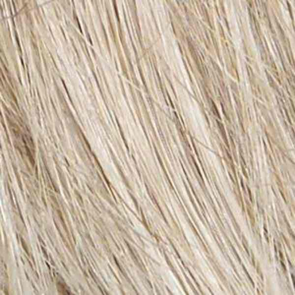 R23S-S+ Glazed Vanilla Wig Colour by Raquel Welch