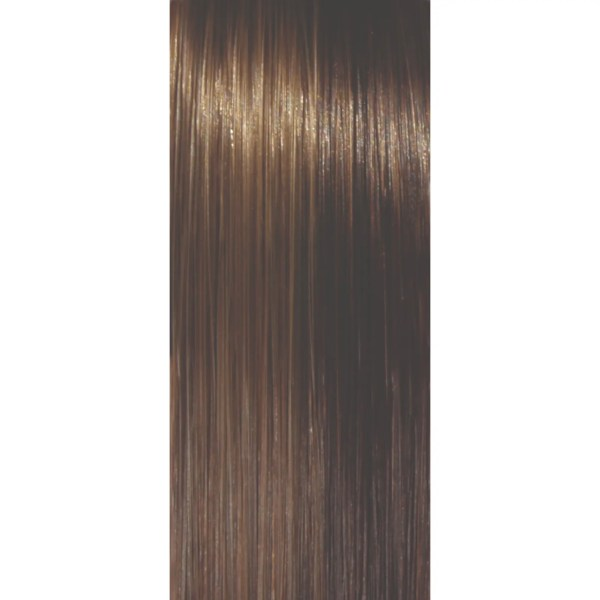Walnut Wig Colour | Orchid Collection by Rene of Paris