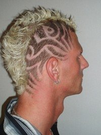 HairWeb De • Haarmuster Rasur Und Schablonen
