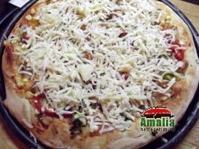 Pui cu pizza 5