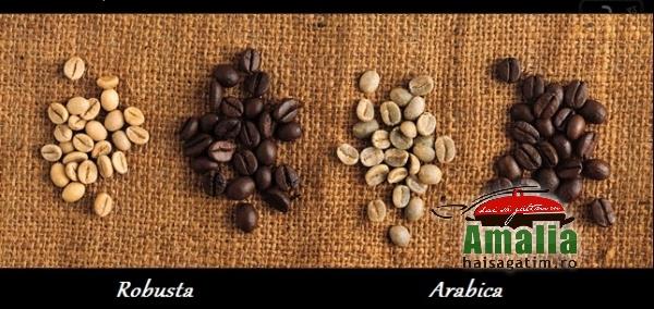 robusta-vs-arabica1