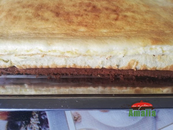 prajitura-inghetata-falsa-americana-amalia-10