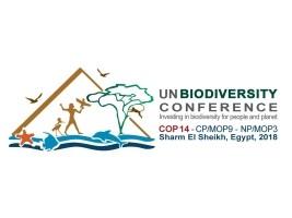 iciHaïti - Environnement : Haïti participe à la COP 14 à Sharm El Sheikh (Egypte)
