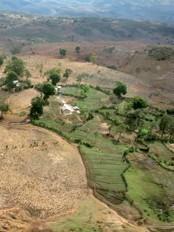 Haïti - Environnement : 20 millions pour protéger la bio-diversité et les bassins versants