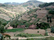 Haïti - Environnement : Projet binational de réhabilitation du bassin versant du fleuve Artibonite