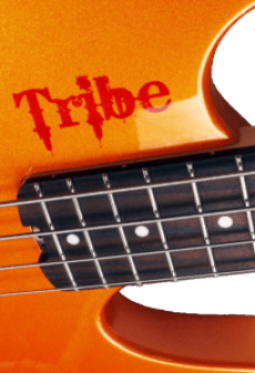 Tribe bass headless orange