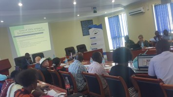 CSO SPACE WORKING ON THE EXTRACTIVE SECTOR IN TANZANIA