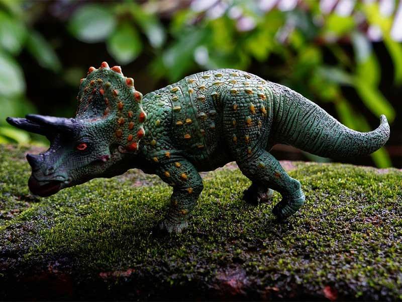 4 Cuentos De Dinosaurios Para Ninos Un Baul Con Cuentos Cortos Easy to download or print! 4 cuentos de dinosaurios para ninos un