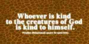 Islam and Animals