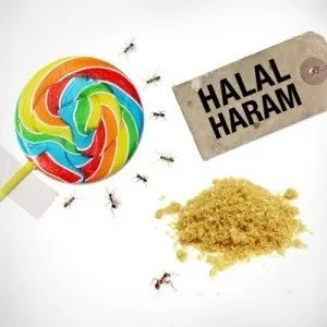 Halal-Haram-karachi1
