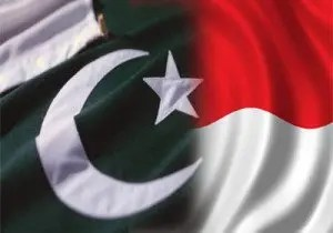 indonesia-pakistan-flag