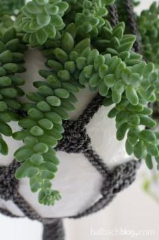 DIY-Idee halbachblog: Hängeampeln aus melierter Kordel selber knoten in schwarz-weiß