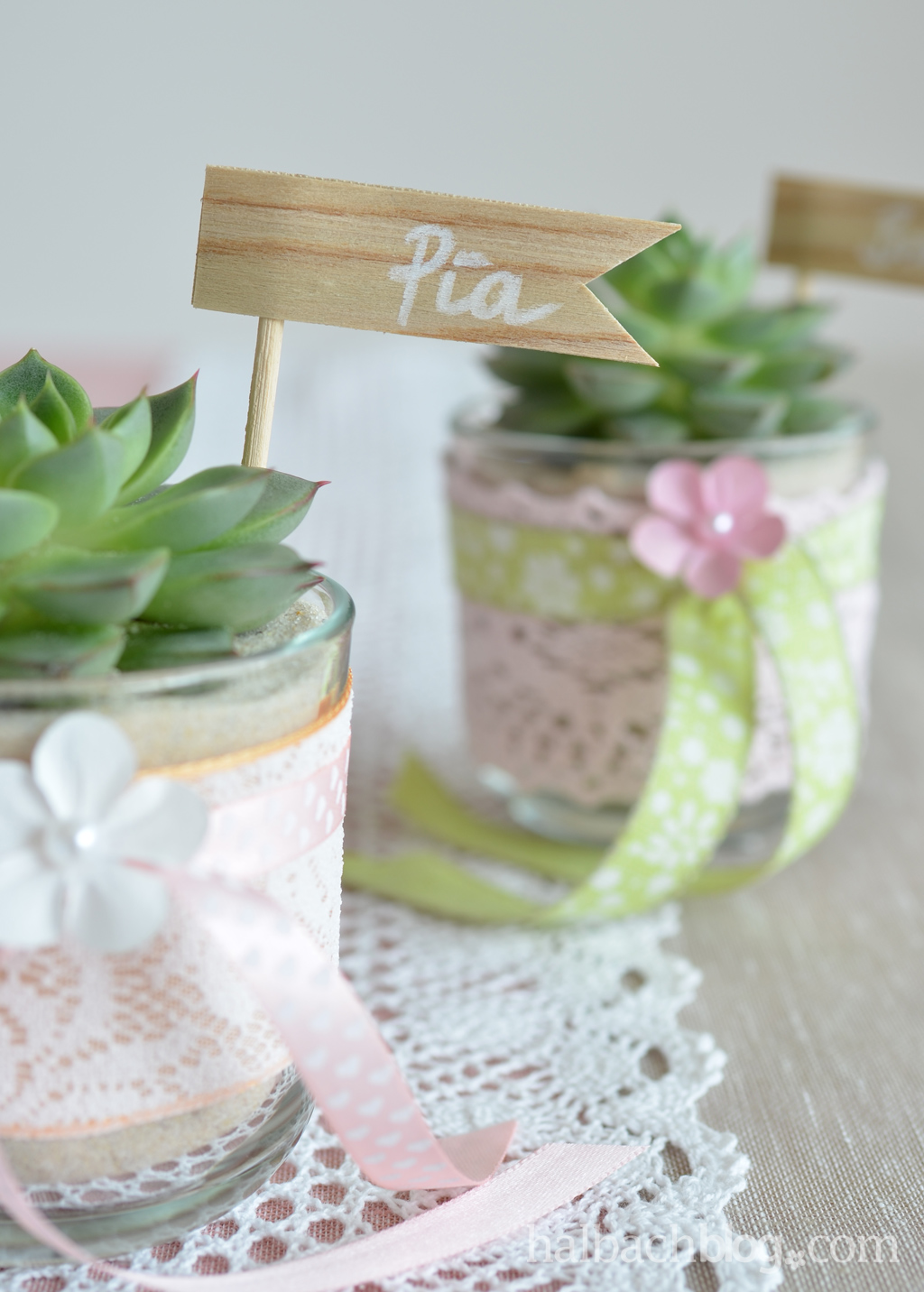 DIY-Idee halbachblog: Gastgeschenke für die Hochzeit - Sukkulente im Glas mit Spitze und Bändern in warmen Pastellfarben