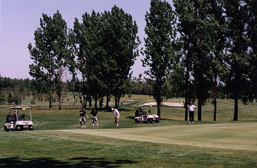Three men enjoy a relaxing game of golf on a beautiful, cloudless summer day