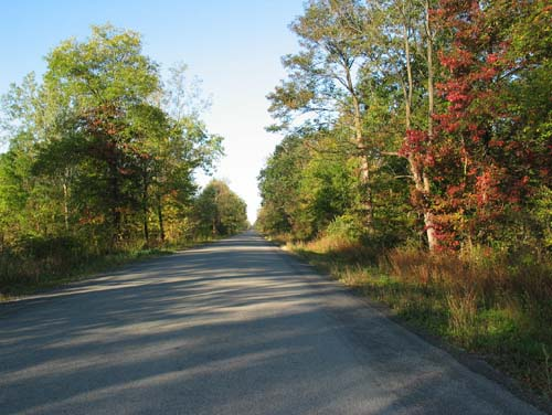 A cool and colourful fall drive that both residents and tourists can enjoy