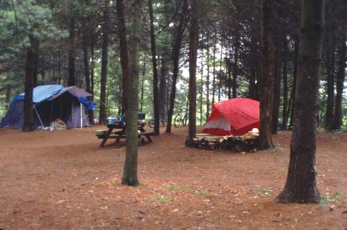 Two tents and a picnic table stand in a lovely wooded area