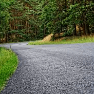 gravel road with trees and grass
