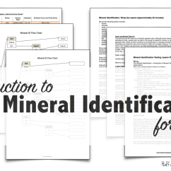 Blank Rock Cycle Diagram Worksheet Labelled Of Nerve Cell Mineral Identification Stations & Flowchart - Half A Hundred Acre Wood